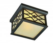 Artcraft AC8266OB - Two Light Amber Glass Brushed Bronze Outdoor Flush Mount
