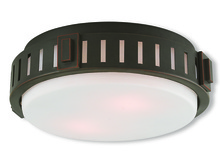 Livex Lighting 65511-67 - 2 Light Olde Bronze Ceiling Mount
