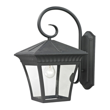 Thomas 8421EW/65 - Ridgewood 1 Light Outdoor Wall Sconce In Matte T