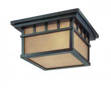 Dolan Designs 9119-68 - 2Lt Ceiling
